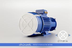 CHINOOK 300